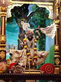 3 Sri Nathji