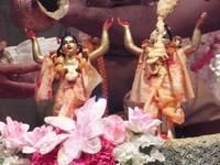 Gaura-Nitai accepting abhisekha