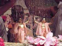 Gaura-Nitai taking bath