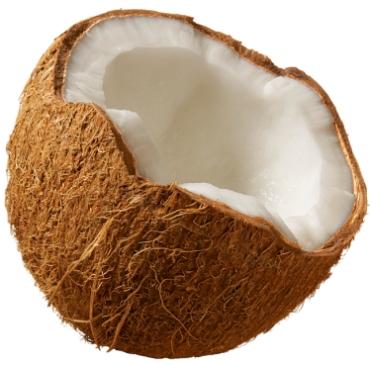 coconut 101.jpg: