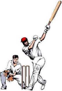 cricket: