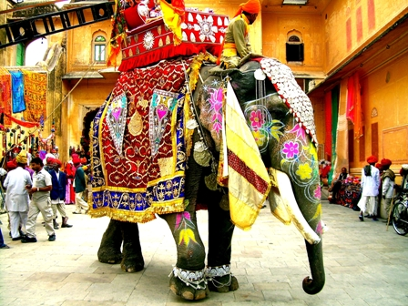 decorated_indian_elephant: