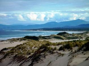 east coast tassie: