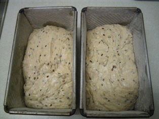 the dough in the tins: