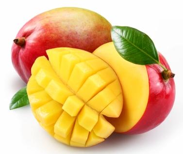 very fresh mango: